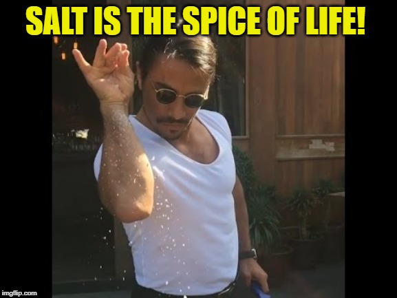 Salt guy | SALT IS THE SPICE OF LIFE! | image tagged in salt guy | made w/ Imgflip meme maker