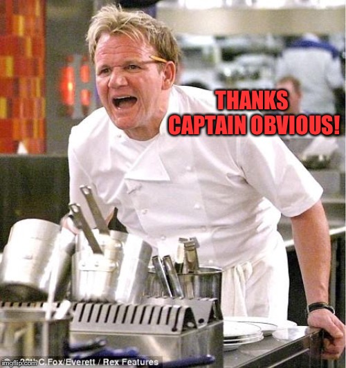 Chef Gordon Ramsay Meme | THANKS CAPTAIN OBVIOUS! | image tagged in memes,chef gordon ramsay | made w/ Imgflip meme maker