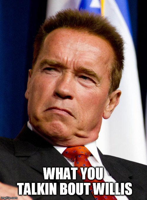 Not the same Arnold from Different Strokes. | WHAT YOU TALKIN BOUT WILLIS | image tagged in arnold schwarzenegger | made w/ Imgflip meme maker