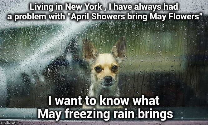 "A lovely Spring day in the Northeast | Living in New York , I have always had a problem with ""April Showers bring May Flowers"" I want to know what May freezing rain brings 