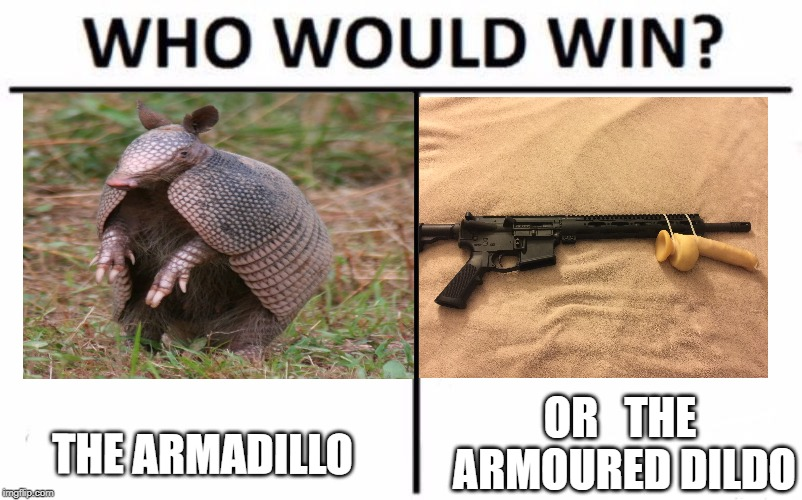 Who Would Win? Meme | THE ARMADILLO OR   THE ARMOURED D**DO | image tagged in memes,who would win | made w/ Imgflip meme maker