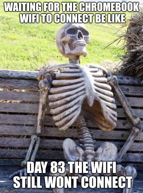 Waiting Skeleton Meme | WAITING FOR THE CHROMEBOOK WIFI TO CONNECT BE LIKE DAY 83 THE WIFI STILL WONT CONNECT | image tagged in memes,waiting skeleton | made w/ Imgflip meme maker