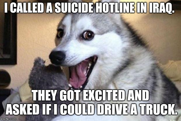 Bad Pun Dog |  I CALLED A SUICIDE HOTLINE IN IRAQ. THEY GOT EXCITED AND ASKED IF I COULD DRIVE A TRUCK. | image tagged in bad pun dog | made w/ Imgflip meme maker
