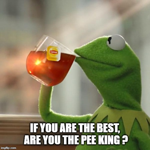But Thats None Of My Business Meme | IF YOU ARE THE BEST, ARE YOU THE PEE KING ? | image tagged in memes,but thats none of my business,kermit the frog | made w/ Imgflip meme maker