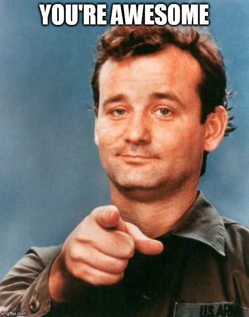 Bill Murray You're Awesome | YOU'RE AWESOME | image tagged in bill murray you're awesome | made w/ Imgflip meme maker