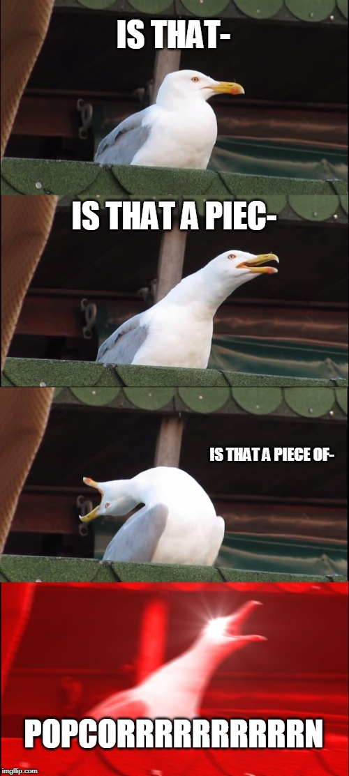 Inhaling Seagull Meme | IS THAT- IS THAT A PIEC- IS THAT A PIECE OF- POPCORRRRRRRRRRN | image tagged in memes,inhaling seagull | made w/ Imgflip meme maker