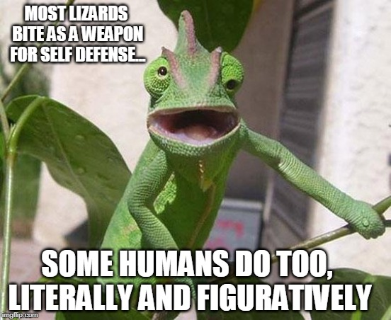 MOST LIZARDS BITE AS A WEAPON FOR SELF DEFENSE... SOME HUMANS DO TOO, LITERALLY AND FIGURATIVELY | image tagged in lizard | made w/ Imgflip meme maker