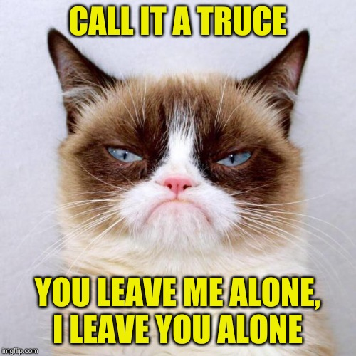 Grumpy Cat Outside | CALL IT A TRUCE YOU LEAVE ME ALONE, I LEAVE YOU ALONE | image tagged in grumpy cat outside | made w/ Imgflip meme maker