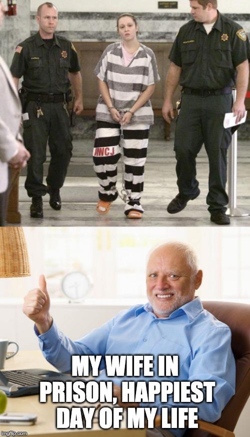 Image tagged in prisoner in custody,hide the pain harold - Imgflip