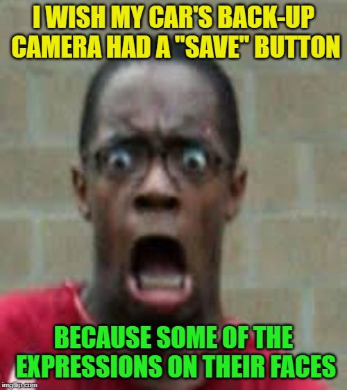 "Look out, i'm backing up |  I WISH MY CAR'S BACK-UP CAMERA HAD A ""SAVE"" BUTTON; BECAUSE SOME OF THE EXPRESSIONS ON THEIR FACES 