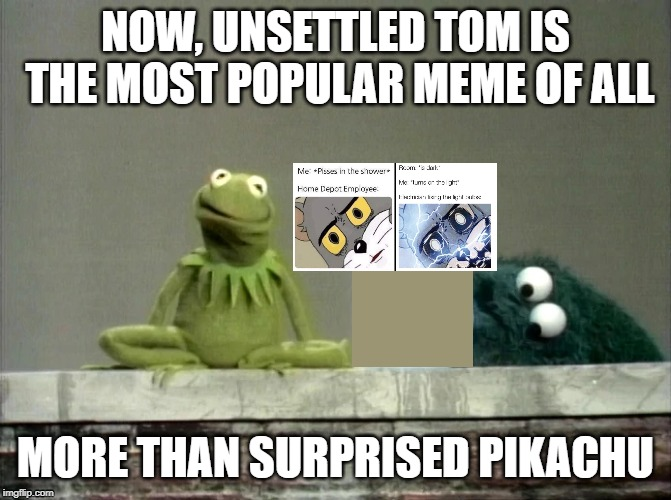 Make your own lecture | NOW, UNSETTLED TOM IS THE MOST POPULAR MEME OF ALL MORE THAN SURPRISED PIKACHU | image tagged in make your own lecture | made w/ Imgflip meme maker