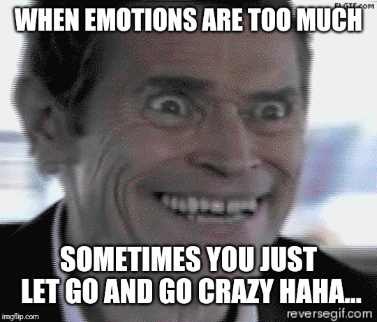 WHEN EMOTIONS ARE TOO MUCH SOMETIMES YOU JUST LET GO AND GO CRAZY HAHA... | image tagged in willem dafoe insanity | made w/ Imgflip meme maker