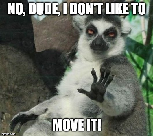 NO, DUDE, I DON'T LIKE TO MOVE IT! | image tagged in i don't like to move it | made w/ Imgflip meme maker