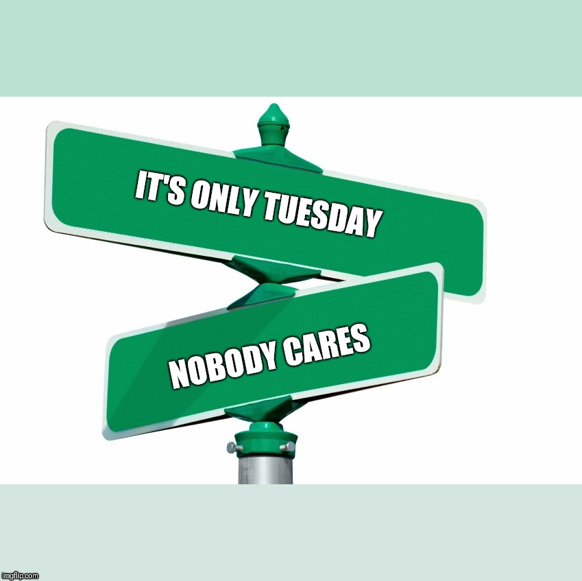 Blank Street Signs | IT'S ONLY TUESDAY NOBODY CARES | image tagged in blank street signs | made w/ Imgflip meme maker
