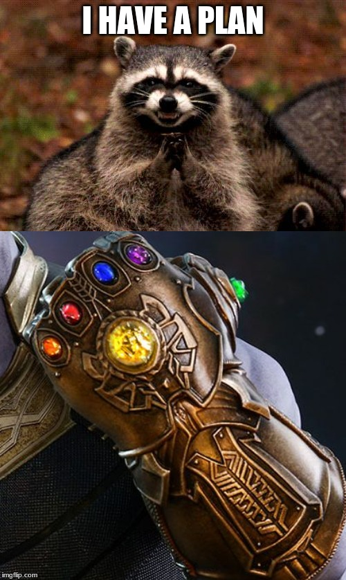 I HAVE A PLAN | image tagged in memes,evil plotting raccoon,thanos glove | made w/ Imgflip meme maker