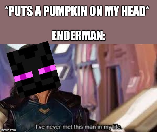 Image result for Enderman Funny pic