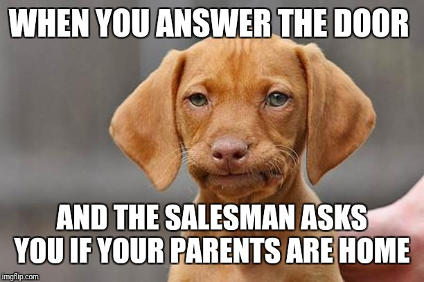 Dissapointed puppy | WHEN YOU ANSWER THE DOOR AND THE SALESMAN ASKS YOU IF YOUR PARENTS ARE HOME | image tagged in my dissapointment is immeasurable and my day is ruined,yes really i'm an adult,embarrassing,lord cheesus,blaze the blaziken | made w/ Imgflip meme maker
