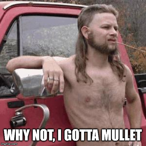 almost redneck | WHY NOT, I GOTTA MULLET | image tagged in almost redneck | made w/ Imgflip meme maker