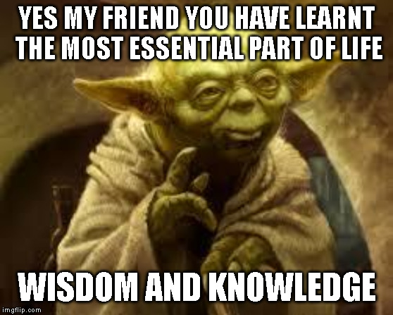 yoda | YES MY FRIEND YOU HAVE LEARNT THE MOST ESSENTIAL PART OF LIFE WISDOM AND KNOWLEDGE | image tagged in yoda | made w/ Imgflip meme maker