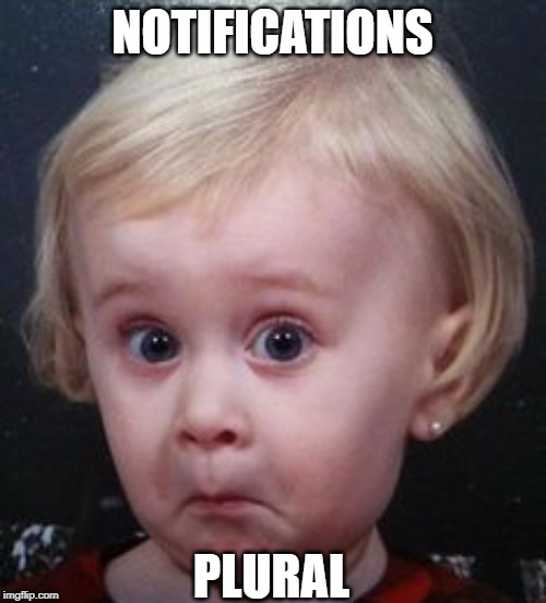 NOTIFICATIONS PLURAL | made w/ Imgflip meme maker