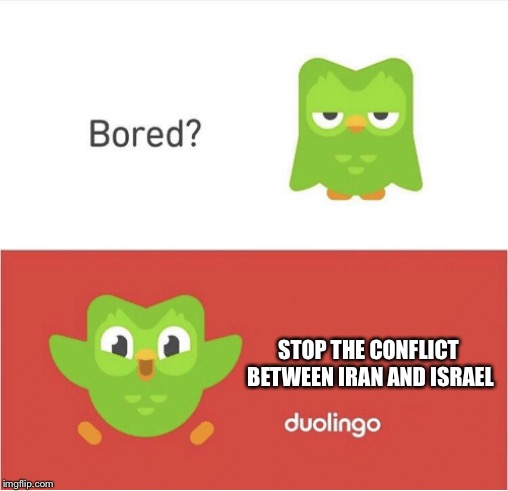 DUOLINGO BORED | STOP THE CONFLICT BETWEEN IRAN AND ISRAEL | image tagged in duolingo bored | made w/ Imgflip meme maker