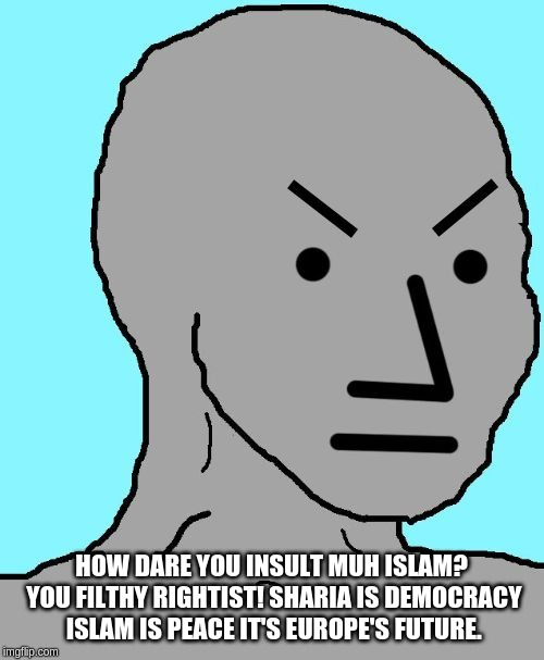 HOW DARE YOU INSULT MUH ISLAM? YOU FILTHY RIGHTIST! SHARIA IS DEMOCRACY ISLAM IS PEACE IT'S EUROPE'S FUTURE. | image tagged in npc meme angry | made w/ Imgflip meme maker
