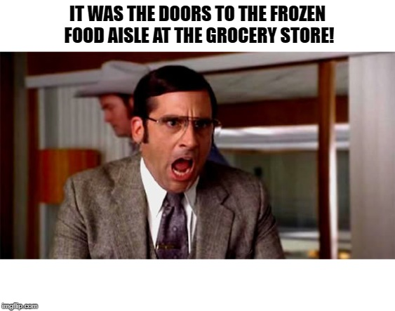Loud Noises | IT WAS THE DOORS TO THE FROZEN FOOD AISLE AT THE GROCERY STORE! | image tagged in loud noises | made w/ Imgflip meme maker