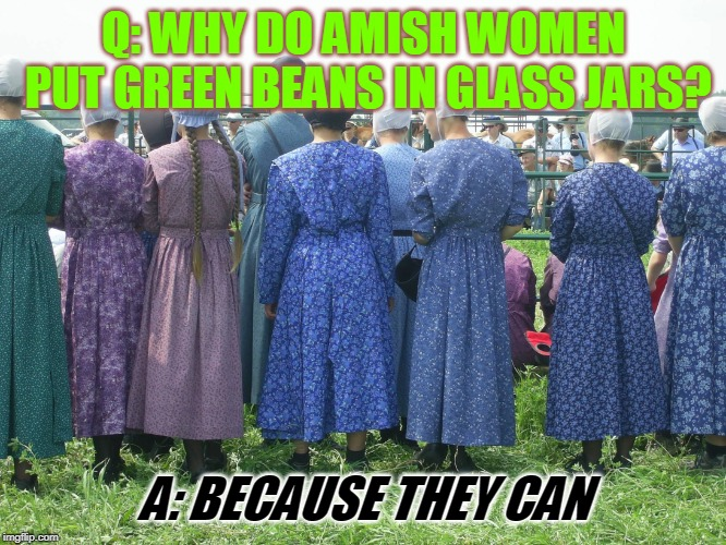 Q: WHY DO AMISH WOMEN PUT GREEN BEANS IN GLASS JARS? A: BECAUSE THEY CAN | image tagged in amish women | made w/ Imgflip meme maker