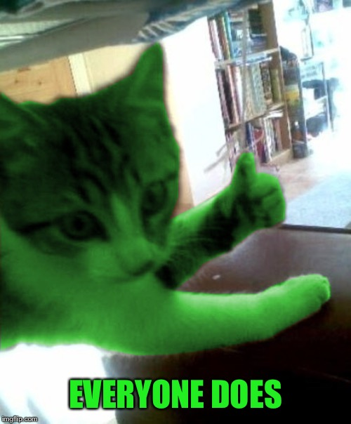 thumbs up RayCat | EVERYONE DOES | image tagged in thumbs up raycat | made w/ Imgflip meme maker