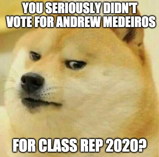 YOU SERIOUSLY DIDN'T VOTE FOR ANDREW MEDEIROS FOR CLASS REP 2020? | image tagged in doge think | made w/ Imgflip meme maker