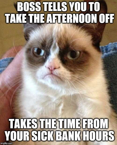 Grumpy Cat Meme | BOSS TELLS YOU TO TAKE THE AFTERNOON OFF TAKES THE TIME FROM YOUR SICK BANK HOURS | image tagged in memes,grumpy cat | made w/ Imgflip meme maker