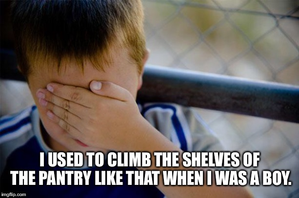 confession kid Meme | I USED TO CLIMB THE SHELVES OF THE PANTRY LIKE THAT WHEN I WAS A BOY. | image tagged in memes,confession kid | made w/ Imgflip meme maker