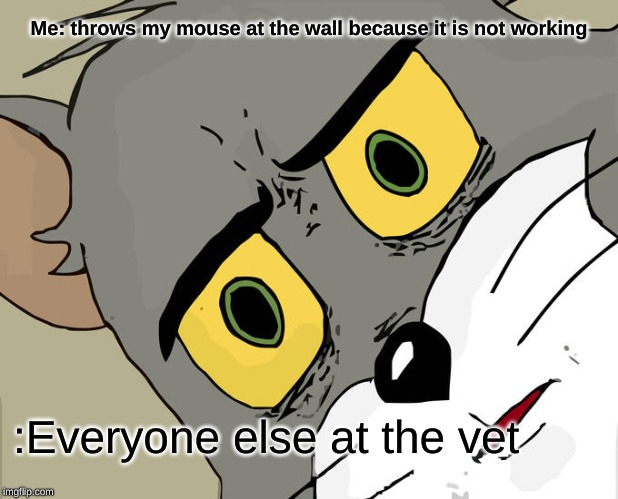 Unsettled Tom Meme |  Me: throws my mouse at the wall because it is not working; :Everyone else at the vet | image tagged in memes,unsettled tom | made w/ Imgflip meme maker