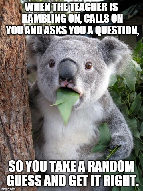 Surprised Koala |  WHEN THE TEACHER IS RAMBLING ON, CALLS ON YOU AND ASKS YOU A QUESTION, SO YOU TAKE A RANDOM GUESS AND GET IT RIGHT. | image tagged in memes,surprised koala | made w/ Imgflip meme maker