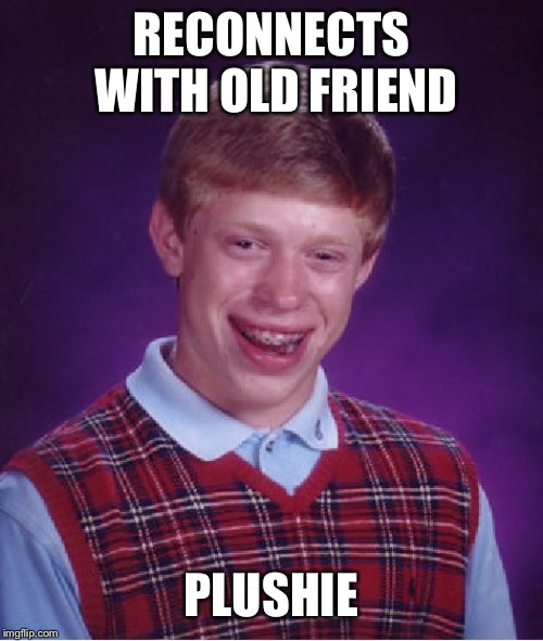 Bad Luck Brian Meme | RECONNECTS WITH OLD FRIEND PLUSHIE | image tagged in memes,bad luck brian | made w/ Imgflip meme maker