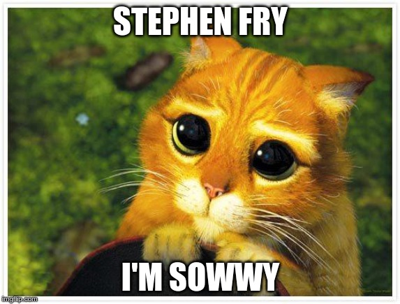 Sorry Kitty | STEPHEN FRY I'M SOWWY | image tagged in sorry kitty | made w/ Imgflip meme maker