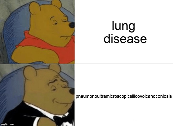 Look it up | lung disease pneumonoultramicroscopicsilicovolcanoconiosis | image tagged in memes,tuxedo winnie the pooh,pneumonoultramicroscopicsilicovolcanoconiosis | made w/ Imgflip meme maker
