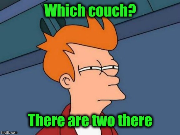 Futurama Fry Meme | Which couch? There are two there | image tagged in memes,futurama fry | made w/ Imgflip meme maker