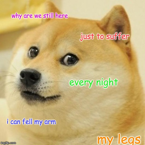 Doge Meme | why are we still here just to suffer every night i can fell my arm my legs | image tagged in memes,doge | made w/ Imgflip meme maker