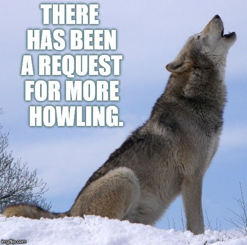 THERE HAS BEEN A REQUEST FOR MORE   HOWLING. | made w/ Imgflip meme maker