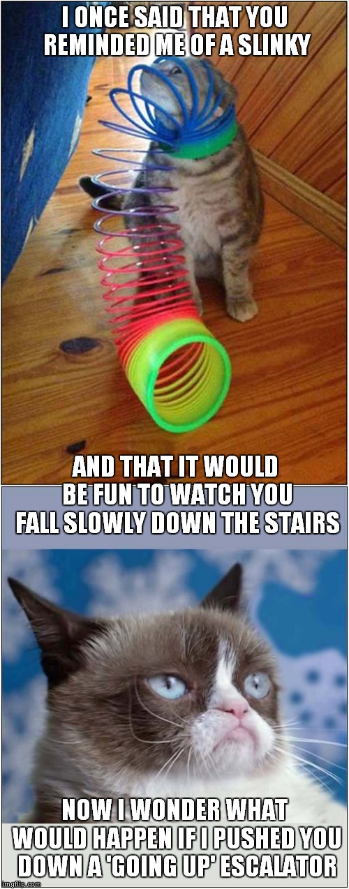 Grumpys 'Never Ending' Slinky Toy | I ONCE SAID THAT YOU REMINDED ME OF A SLINKY NOW I WONDER WHAT WOULD HAPPEN IF I PUSHED YOU DOWN A 'GOING UP' ESCALATOR AND THAT IT WOULD BE | image tagged in cats,grumpy cat | made w/ Imgflip meme maker