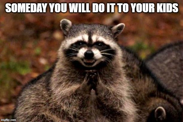 Evil Plotting Raccoon Meme | SOMEDAY YOU WILL DO IT TO YOUR KIDS | image tagged in memes,evil plotting raccoon | made w/ Imgflip meme maker