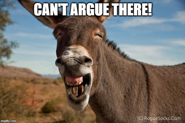 Donkey Jackass Braying | CAN'T ARGUE THERE! | image tagged in donkey jackass braying | made w/ Imgflip meme maker
