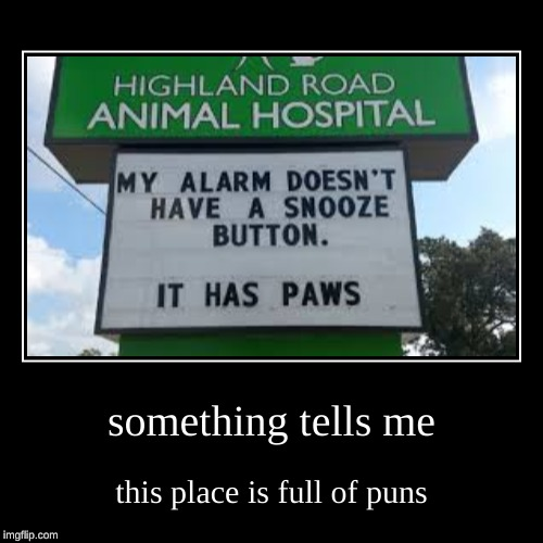 my first demotivational | something tells me | this place is full of puns | image tagged in funny,demotivationals | made w/ Imgflip demotivational maker