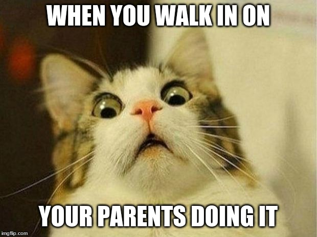 Scared Cat | WHEN YOU WALK IN ON YOUR PARENTS DOING IT | image tagged in memes,scared cat | made w/ Imgflip meme maker