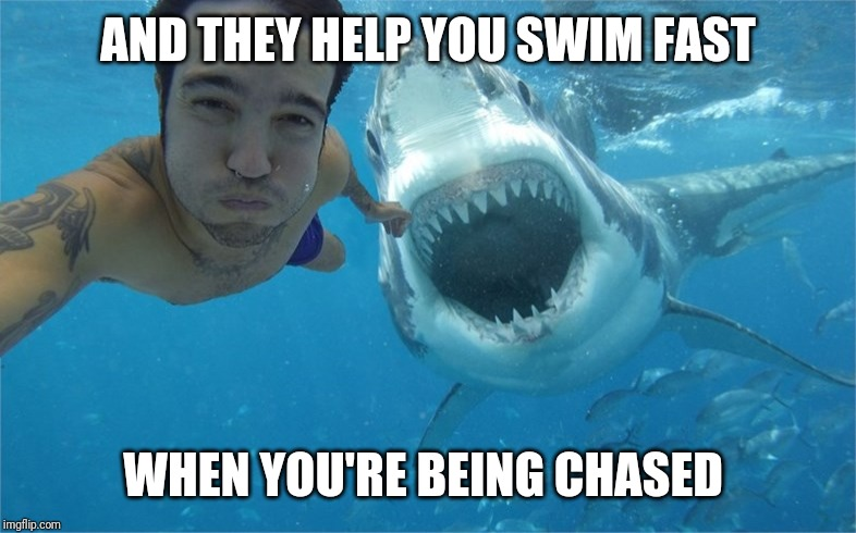 shark attack | AND THEY HELP YOU SWIM FAST WHEN YOU'RE BEING CHASED | image tagged in shark attack | made w/ Imgflip meme maker