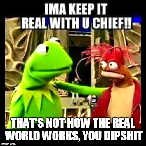 Imma Keep It Real With You Chief | THAT'S NOT HOW THE REAL WORLD WORKS, YOU DIPSHIT | image tagged in imma keep it real with you chief | made w/ Imgflip meme maker