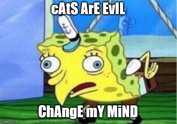 cAtS ArE EvIL ChAngE mY MiND | image tagged in memes,mocking spongebob | made w/ Imgflip meme maker