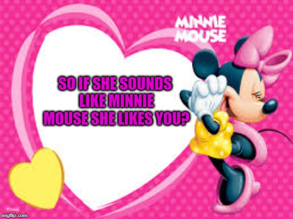 Minnie Mouse | SO IF SHE SOUNDS LIKE MINNIE MOUSE SHE LIKES YOU? | image tagged in minnie mouse | made w/ Imgflip meme maker