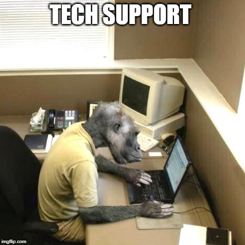 Monkey Business |  TECH SUPPORT | image tagged in memes,monkey business | made w/ Imgflip meme maker